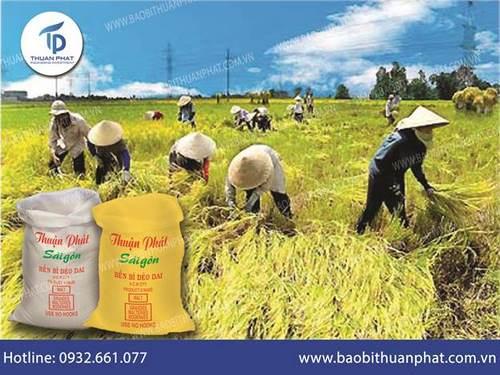 Bao bì đựng lúa nông sản